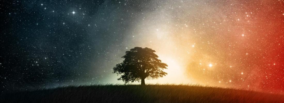 Notte sotto le stelle 3